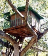 Kerala-treehouse-marayoor